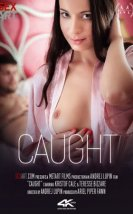 Caught erotik film izle
