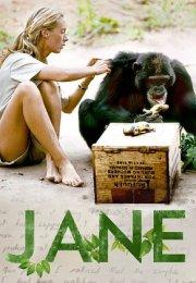 Jane Belgesel İzle