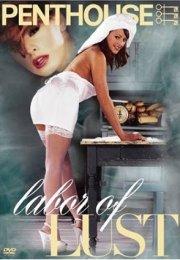 Labor Of Lust Erotik Film İzle