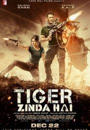 Tiger Zinda Hai izle