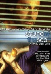 Denizin Sesi 2001 izle