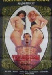Yaz Deftere 1979 yerli erotik izle