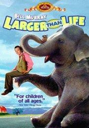 Yol Arkadaşım Bir Fil (1996) izle