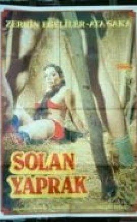 Solan Yaprak Zerrin Egeliler erotik film izle