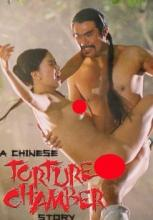 a chinese torture chamber story izle