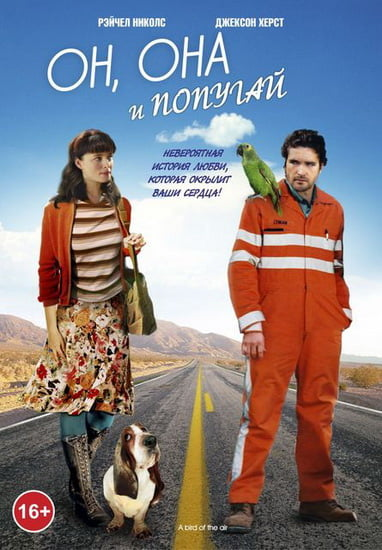 Gökte Bir Kuş – A Bird Of The Air izle