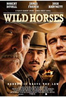 Vahşi Atlar – Wild Horses 2015 izle